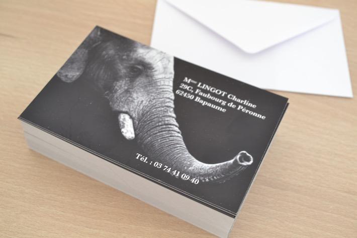 Carte De Visite Pour Particulier Pas Cher 128x82mm Avec Enveloppes