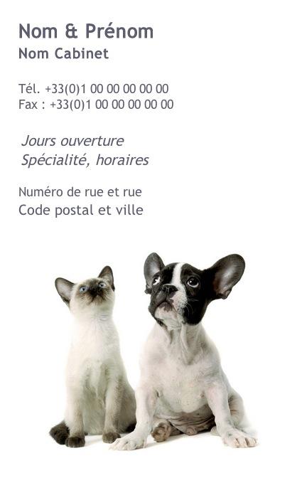 Cabinet Veterinaire Exemple Carte De Visite Pas Chere Modele Professionnel Gratuit A Personnaliser Et Telecharger En Ligne Impression