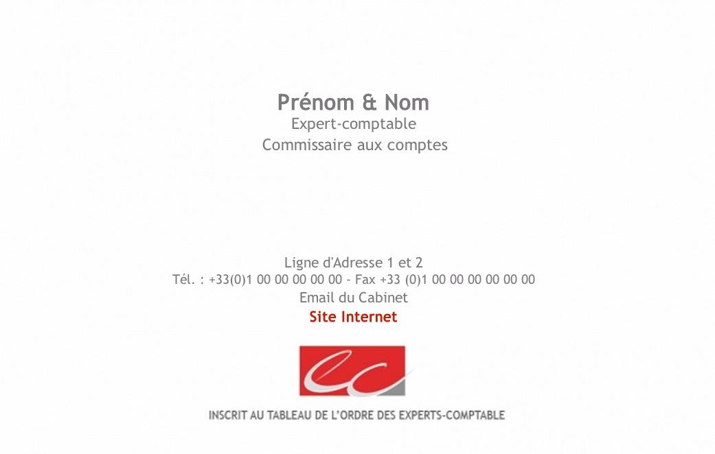 Modele Carte De Visite Professionnelle Pour Expert Comptable Exemple Et A Personnnaliser
