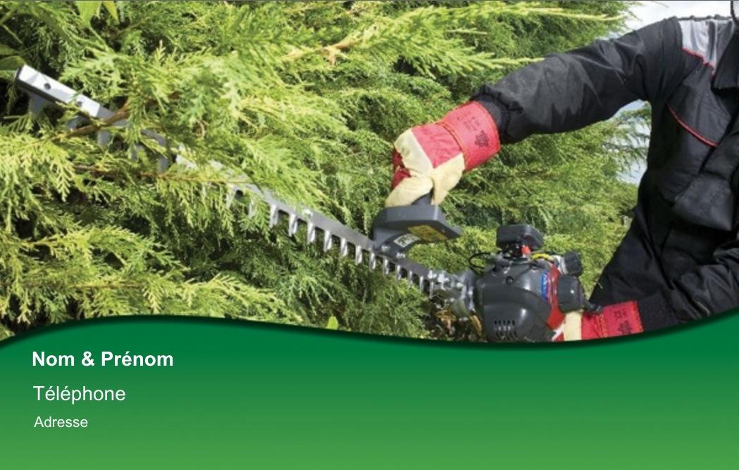 Jardinage A Domicile Espace Vert Carte De Visite Pour Pro Paysagiste Impression Pas Chere Personnaliser En Ligne Modele Gratuit
