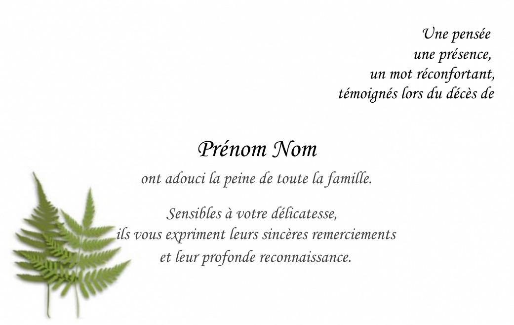 Bcarte Remerciement Deces Pas Cher A Personnaliser B Avec Texte Simple Condoleances
